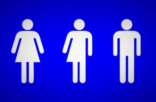 Bill would make all single-occupancy bathrooms gender neutral in New York