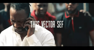 tHIS VECTOR SEF