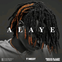 Twest - Alaye (Snippet)