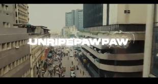Zlatan – Unripe Pawpaw Video