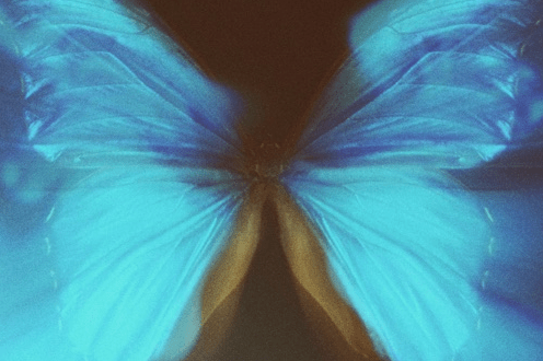 """Stream WurlD's new EP titled """"Afrosoul"""" [Apple Music]"""