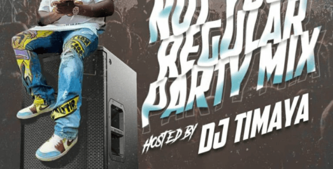 Dj Timaya - Not Your Regular Party Mix