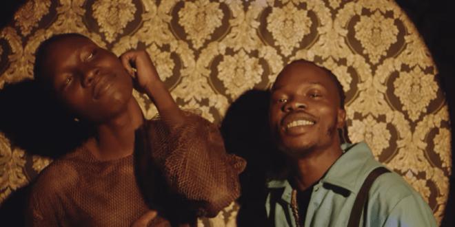 Zinoleesky - Naira Marley Video