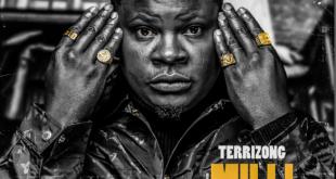 Terrizong - Mili Dreams EP