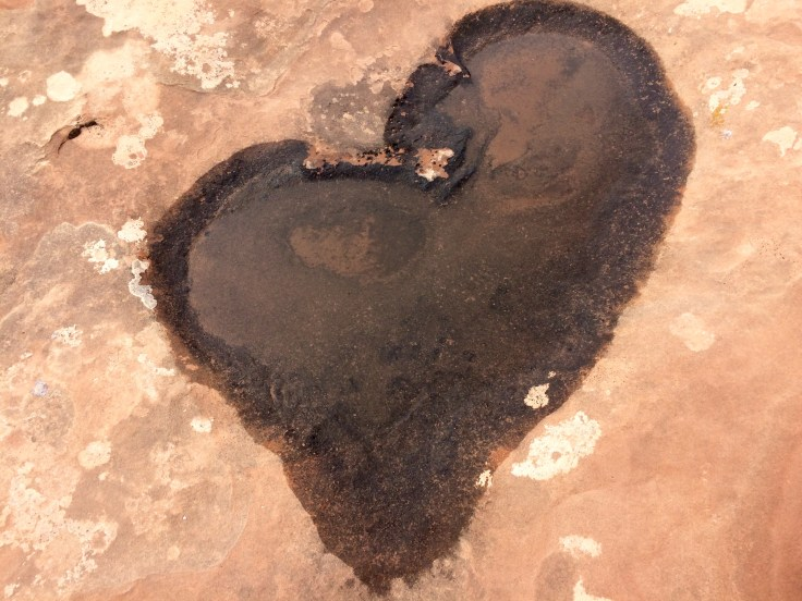 Heart_Puddle_Photo_By_Jana_Schoech.jpg