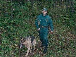 Наказания за перевозку мигрантов в Латвию