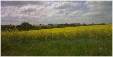 paysage_mayenne_2.jpg