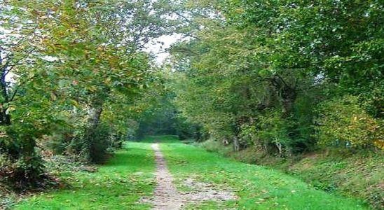 sentier en Mayenne