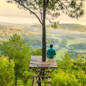 Homme en haut d'un arbre assis sur une plateforme regardant au loin un paysage d'Asie. Cette image représente le stage