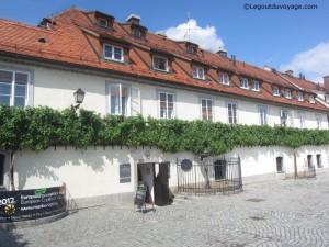 Plus vieille vigne au monde - Maribor, Slovénie
