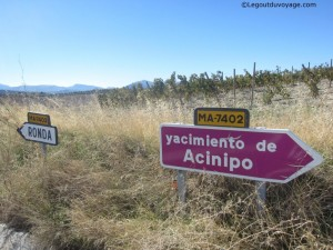 Yacimiento de Acinipo