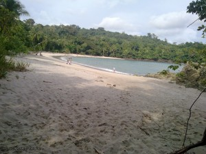 Plage - Parc national de Manuel Antonio - Costa Rica