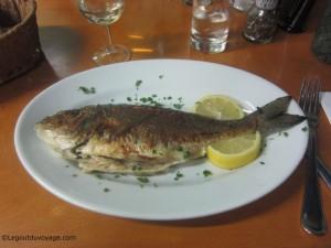 Plat de poisson - Restaurant Bujol - Izola