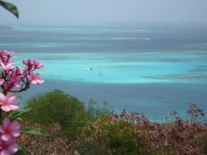 Avantages Croisière Iles Grenadines