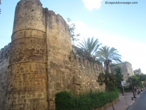 Muraille Arabe – Visiter Marbella