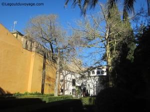 Patio del Leon - Alcazar de Séville