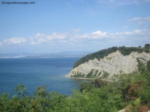Istrie slovène