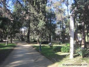 Jardin Inglés - Les jardins de l'Alcazar