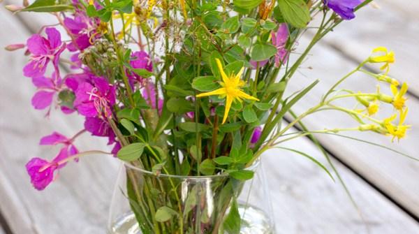bouquet coloré de fleurs des champs