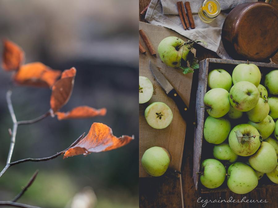 automne et pommes