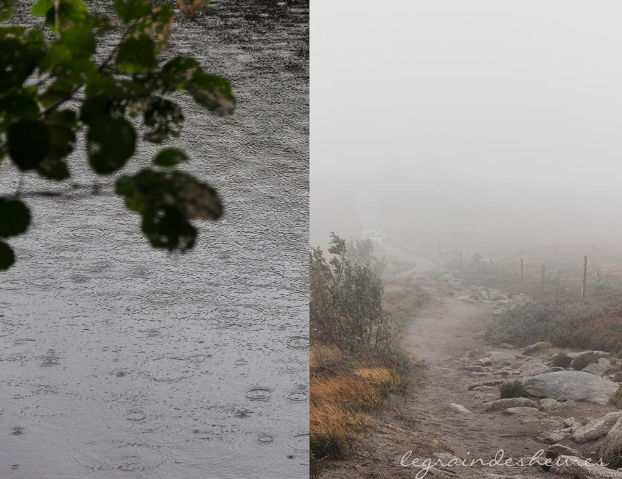 pluie et brouillard d'automne dans les Vosges