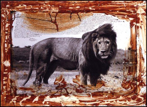 peter_beard_serengeti_lion.jpeg
