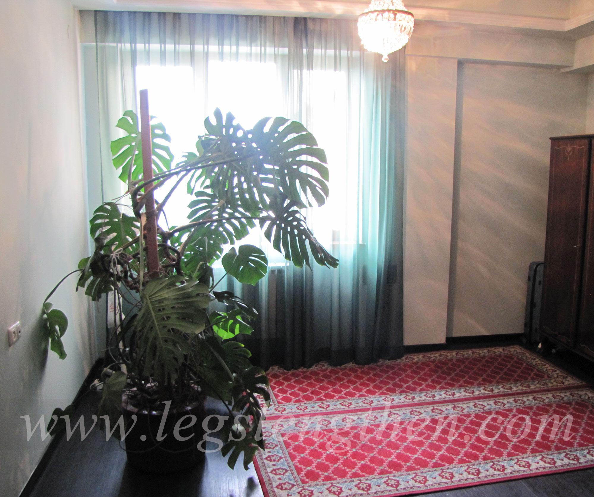 5-apartment-legs-lensgthening-armenia.jpg