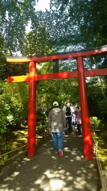 How cute is this gate! This marks the entrance to the Japanese Garden.