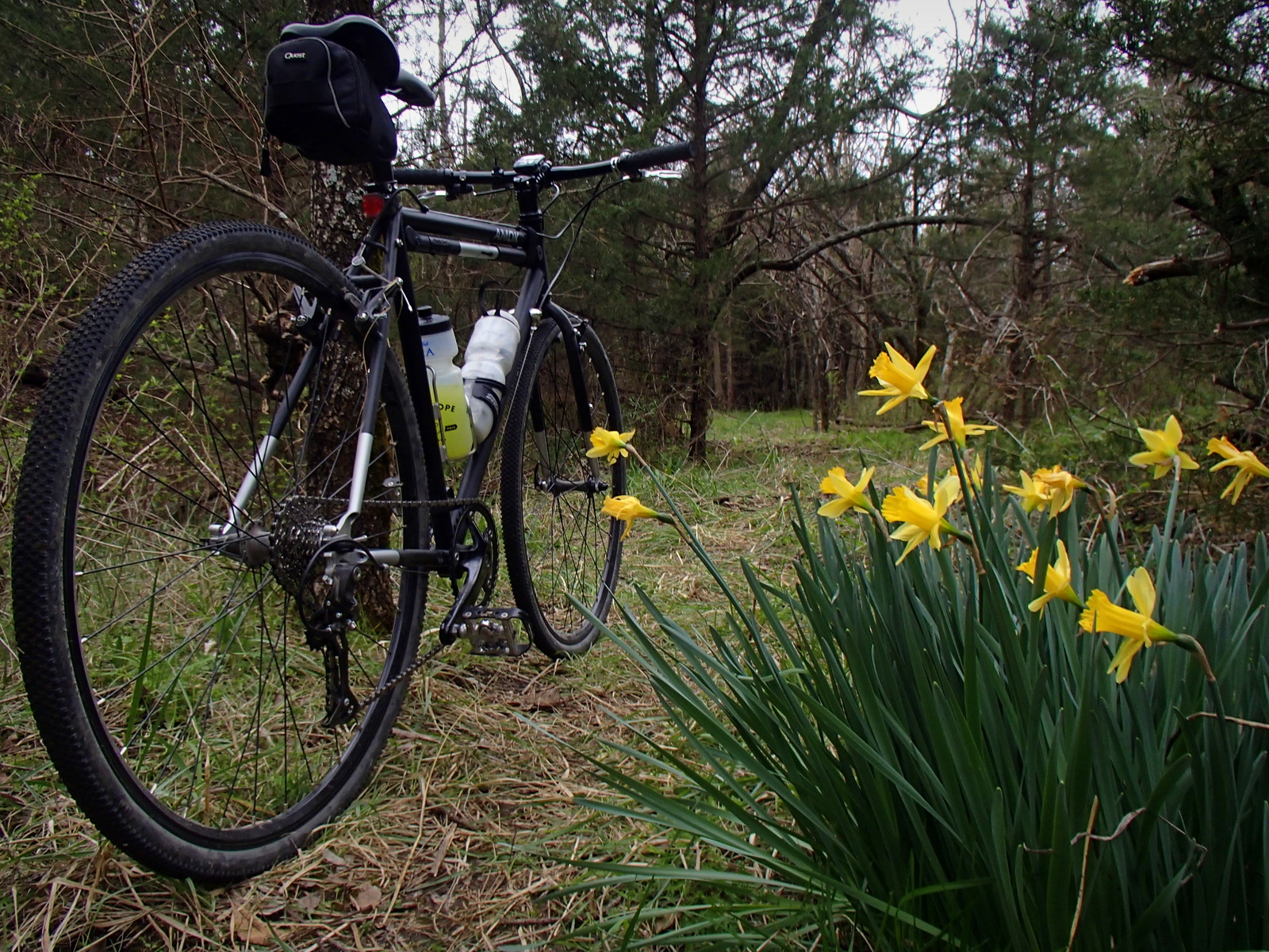 Spring at Lehigh Portland Trails​
