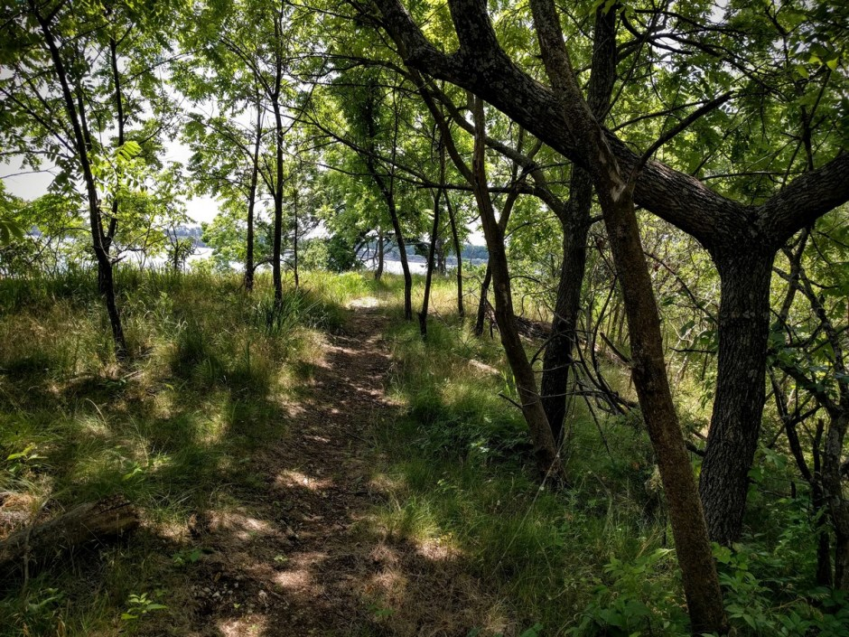 The trail passes through a grassy area, and emerges on a bluff with great views overlooking the lake.