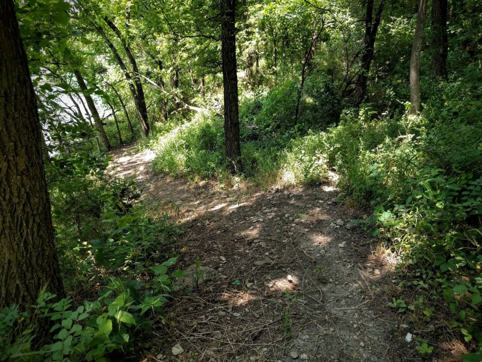 The Mountain Goats Trail winds through the trees along the lake, following the contours of the land.