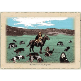 Bassetcards-prairiedog