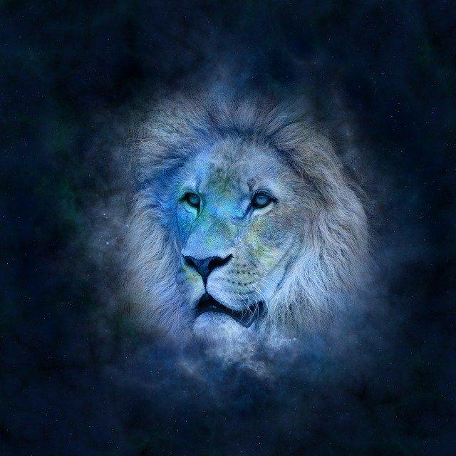Здоровье льва