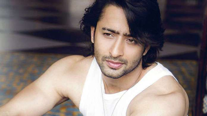7 Lesser Known Facts About Shaheer Sheikh