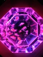 アクアリウム2.jpg