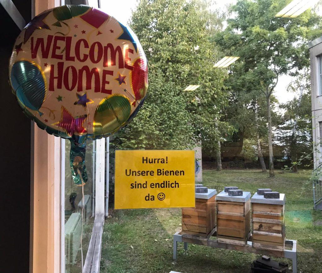 """Bild der Bienenstöcke vom Fenster aus mit Hinweisschild und """"Welcome Home""""-Ballon"""