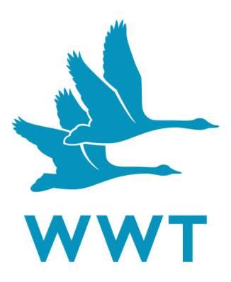 WWT_Logo_CMYK