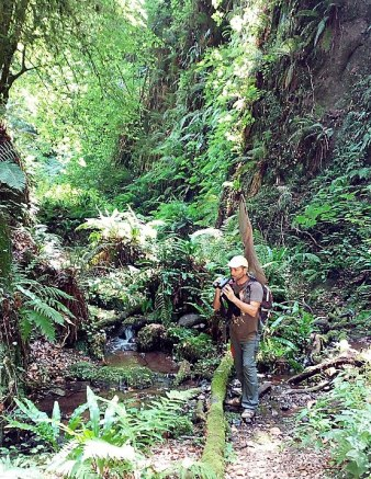 Andrea Corso searching for the endemic dragonfly Italian Goldenring (Cordulegaster trinacriae) in central Italy.