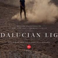 Andalucian Light