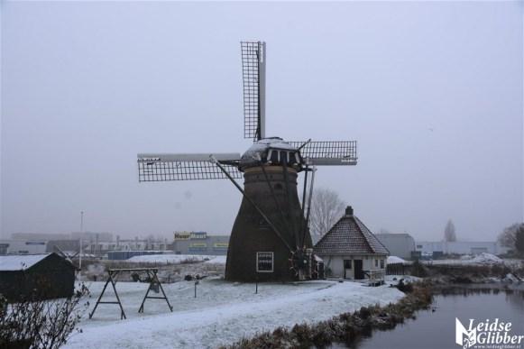 Sneeuw 31 januari (14)