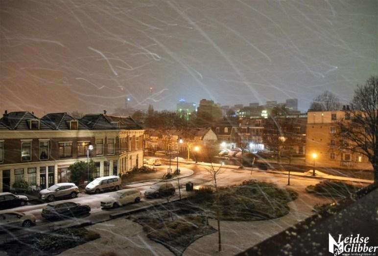 Sneeuw 31 januari (2)