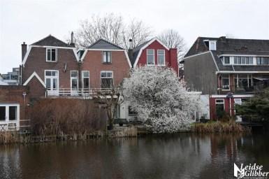Haarlemmerweg (5)