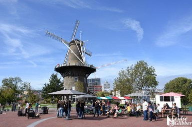 Potpourri Lammermarkt (2)