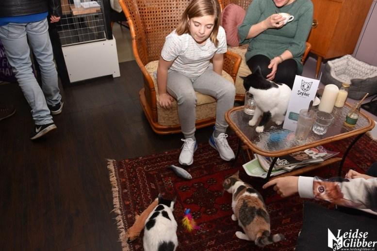 Kattencafé Sophie (12)