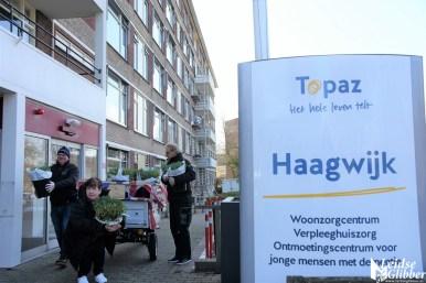 Tulpen Haagwijk CHDR Rederij (36)