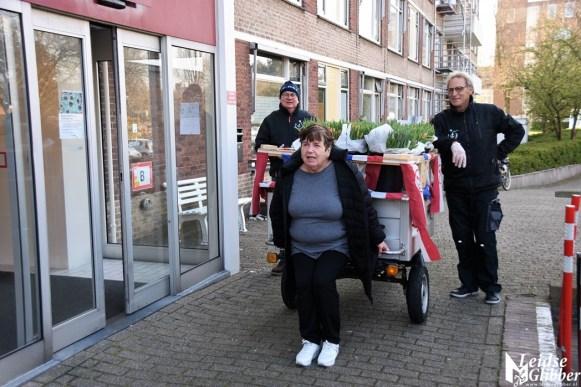Tulpen Haagwijk CHDR Rederij (29)