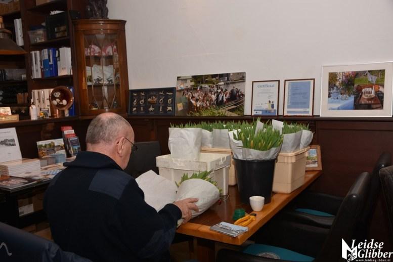 Tulpen Haagwijk CHDR Rederij (11)