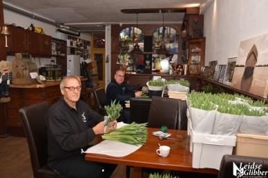 Tulpen Haagwijk CHDR Rederij (5)