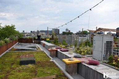 Roof bar PLNT (23)