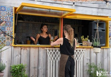 Roof bar PLNT (9)